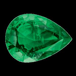 Dalloz Para - Verde