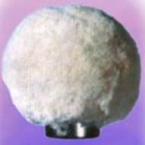 ciuperca-bumbac