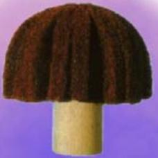 ciuperca-sbrite